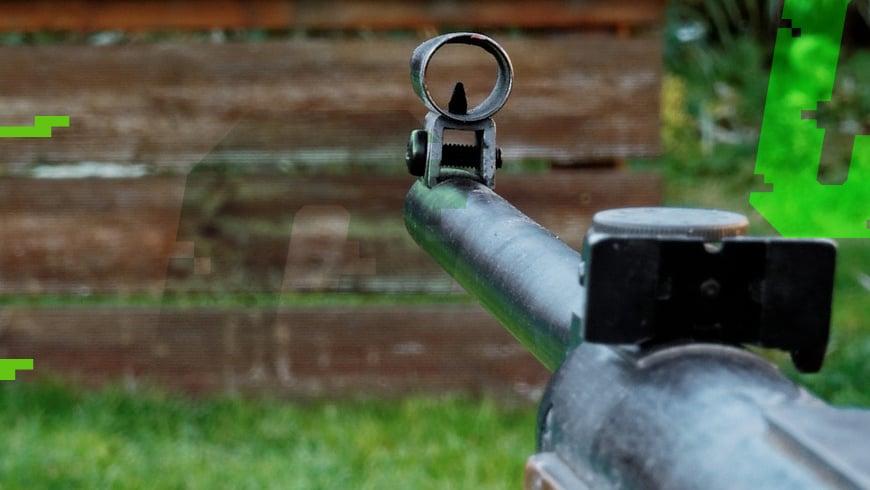 strzelanie z wiatrówki w ogrodzie