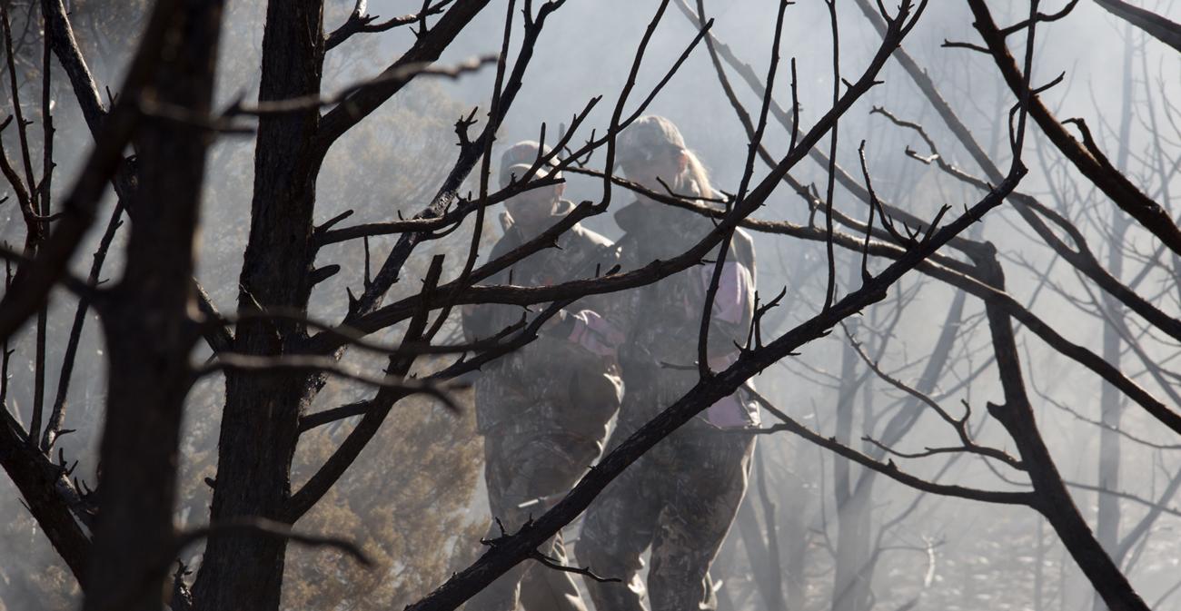 Dwoje ludzi wśród drzew