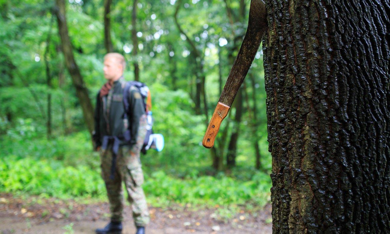 Maczeta wbita w drzewo