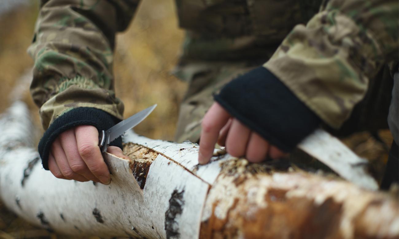 Człowiek z nożem odrywający korę