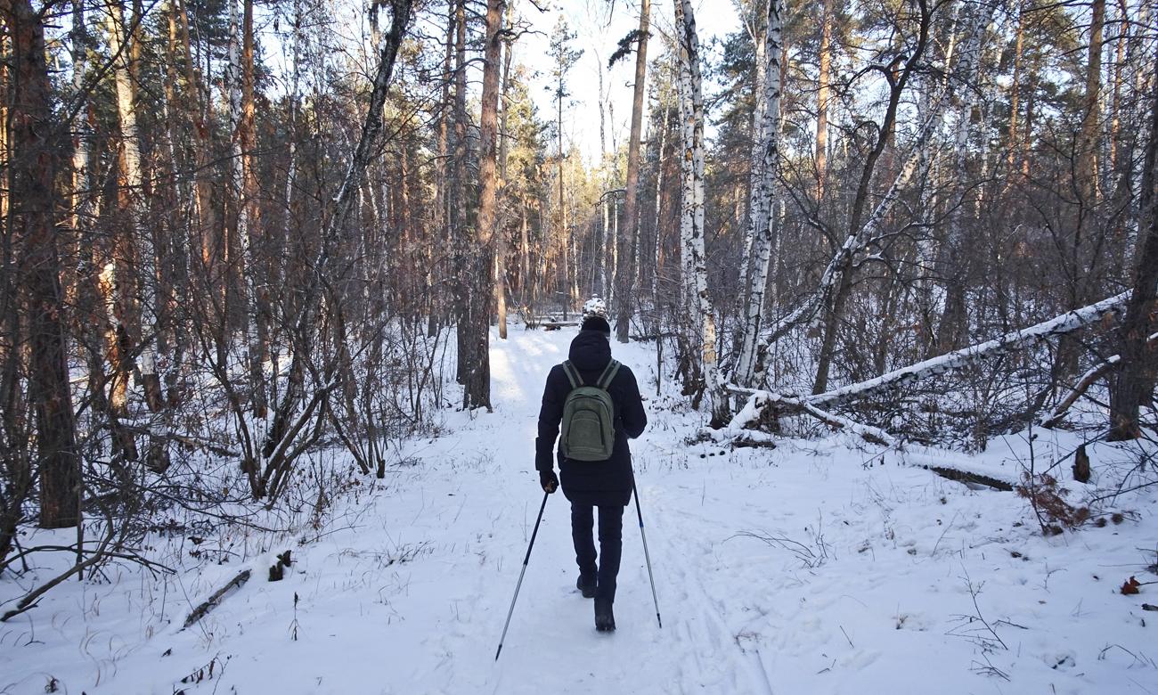 Człowiek na spacerze w lesie