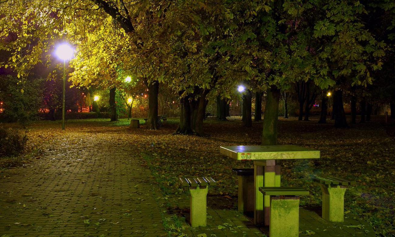 Noc w niebezpiecznym parku