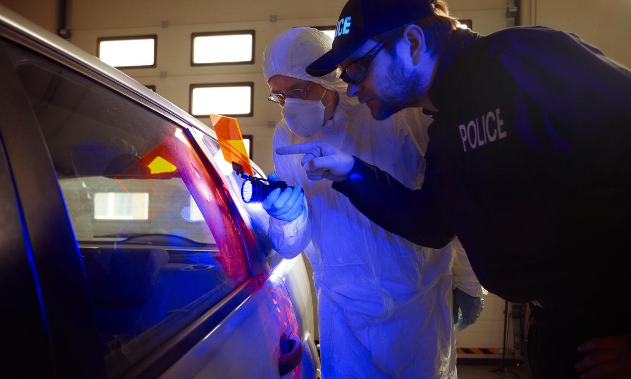 Policjanci szukający dowódów światłem UV