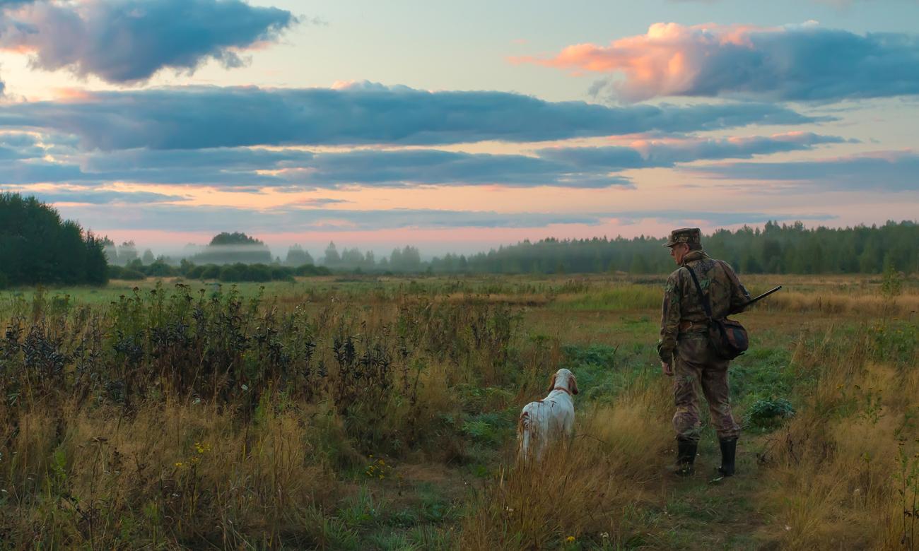 Człowiek z wiatrówką na łące wraz z psem