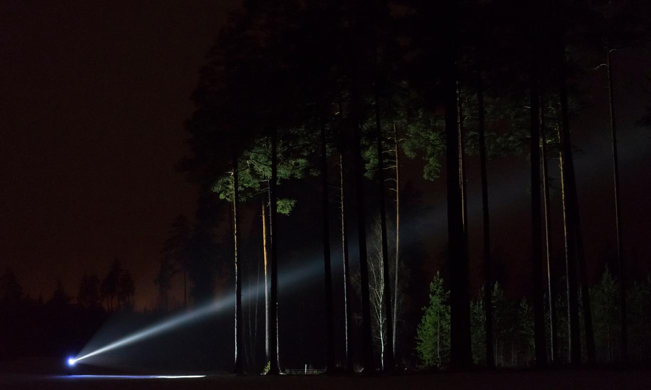 Człowiek z latarką w lesie