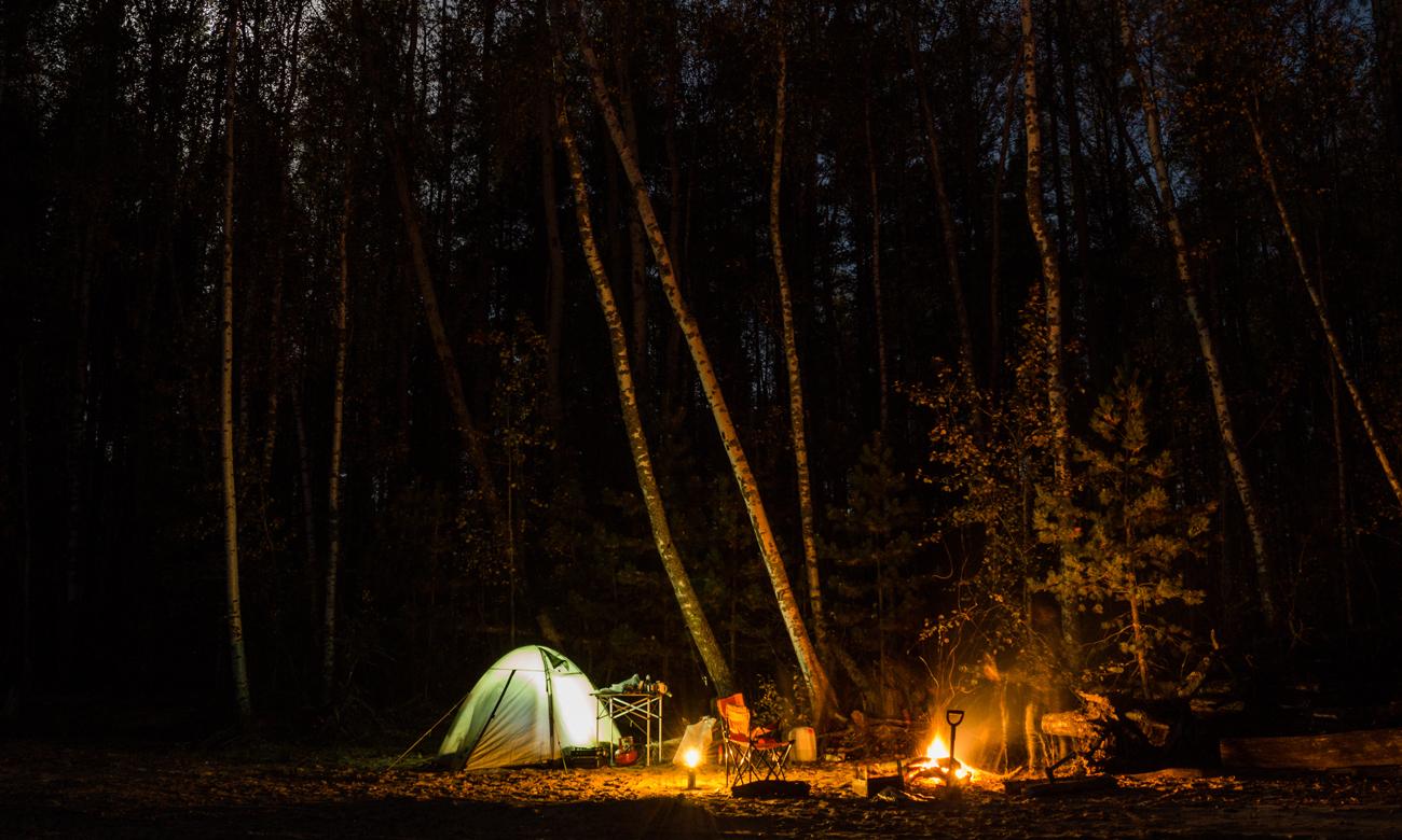 Biwak w lesie