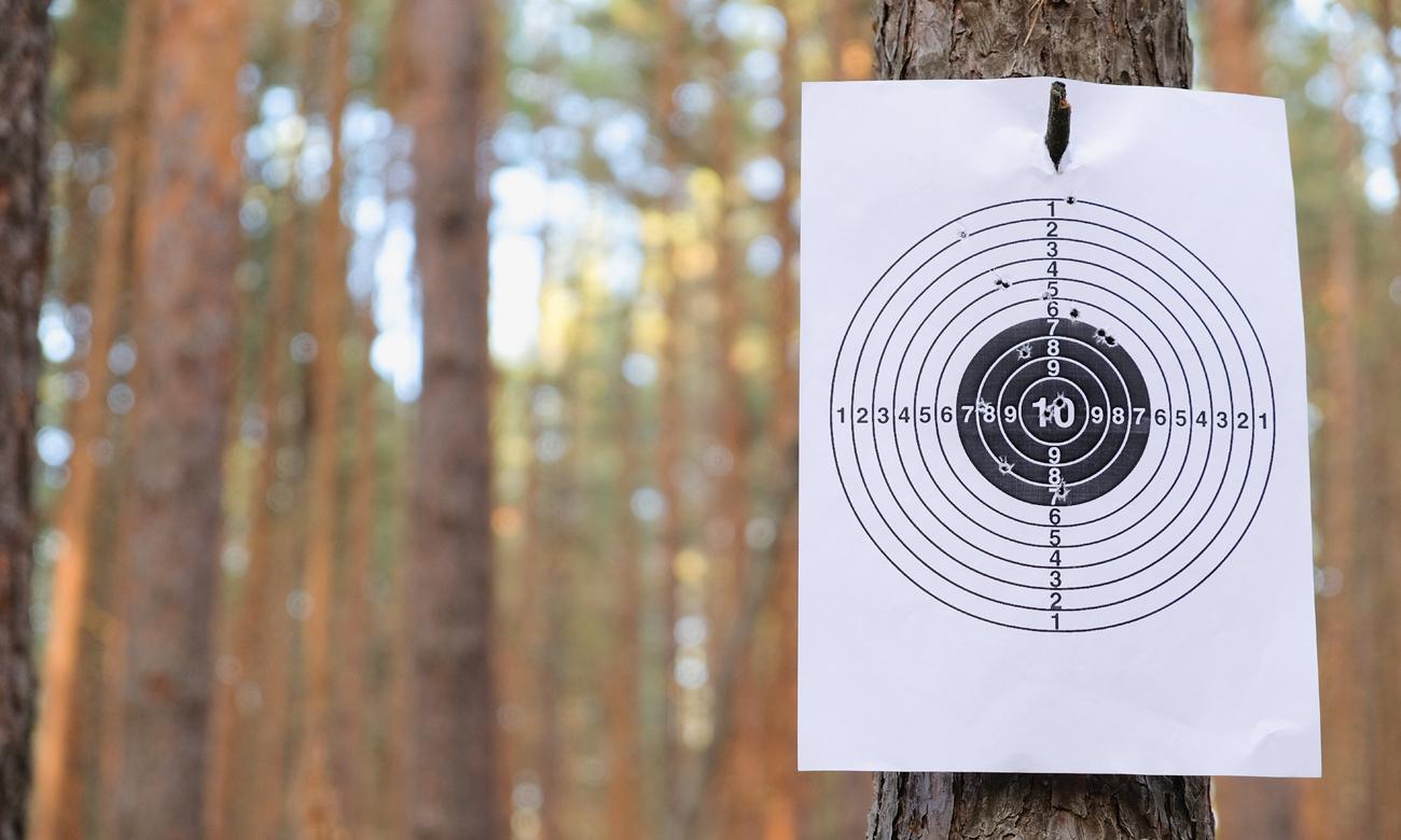 Tarcza strzelecka zawieszona na drzewie